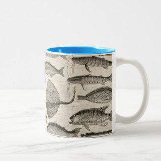 Vintage Scientific Fish Swimming Amazon River Fins Two-Tone Coffee Mug