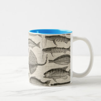 Vintage Scientific Fish Swimming Amazon River Fins Two-Tone Coffee Mug