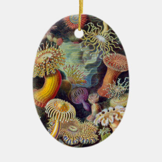 Vintage sea anemones scientific illustration christmas ornament