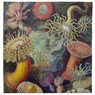 Vintage sea anemones scientific illustration napkin