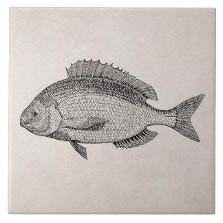 Vintage Sea Bream Fish Retro Fishes Template Tile