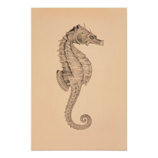 Vintage Sea Horse Diptych I Poster