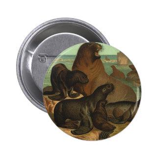 Vintage Sea Lions on the Beach, Marine Life Animal 6 Cm Round Badge