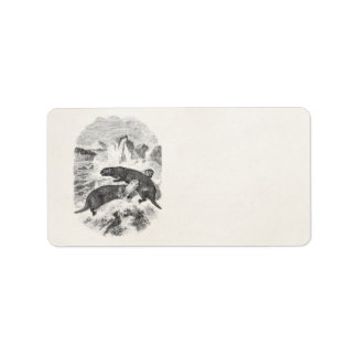 Vintage Sea Otters 1800s Otter Illustration Address Label