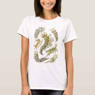 Vintage Sea Slugs and Snails by Ernst Haeckel T-Shirt