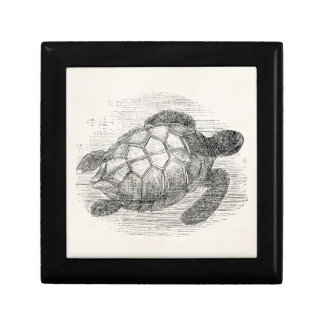 Vintage Sea Turtle Personalized Marine Turtles Gift Box