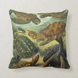 Vintage Sea Turtles and Tortoises by Ernst Haeckel Cushion