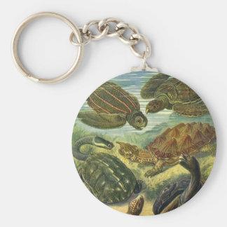 Vintage Sea Turtles Land Tortoise by Ernst Haeckel Key Ring