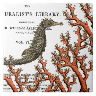 Vintage Seahorse and Coral Botanical Illustration Tile