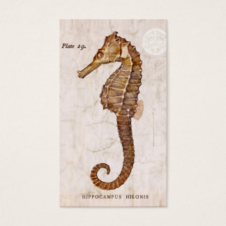 Vintage Seahorse - Antique Seahorses Customized Business Card