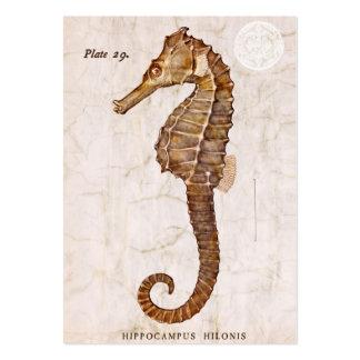 Vintage Seahorse - Antique Seahorses Customized Business Card