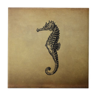 Vintage Seahorse Illustration Tile