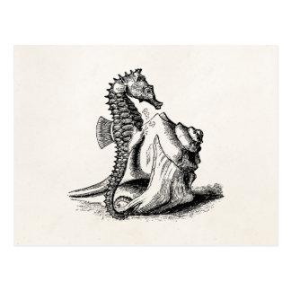 Vintage Seahorse Sea Horse Trumpet Shell Beach Postcard