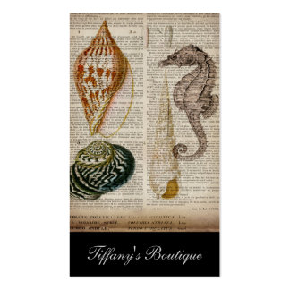 vintage seahorse sea shells beach pack of standard business cards