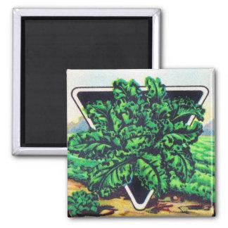 Vintage Seed Package Kale Vegetables Square Magnet