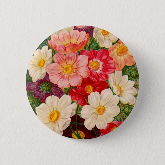 Vintage Seed Packet Catalogue Cards, Postage, 6 Cm Round Badge