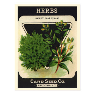 Vintage Seed Packet Label Art Sweet Marjoram Herbs Postcard