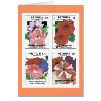 Vintage Seed Packets Greeting Card