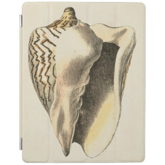 Vintage Sepia Conch Shell iPad Cover