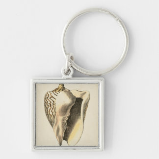 Vintage Sepia Conch Shell Key Ring