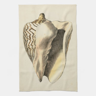 Vintage Sepia Conch Shell Tea Towels
