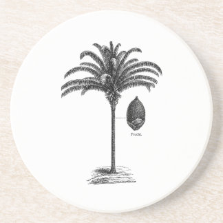 Vintage Sepia Retro Brazilian Palm Tree Template Coaster