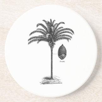 Vintage Sepia Retro Brazilian Palm Tree Template Coaster
