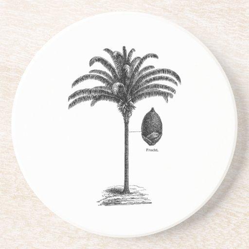 Vintage Sepia Retro Brazilian Palm Tree Template Drink Coasters