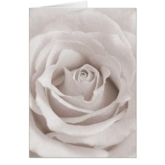 Vintage Sepia White & Cream Rose Background Custom Card
