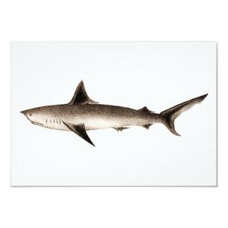 Vintage Shark Illustration - Retro Sharks Template