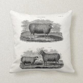 Vintage Sheep Ewe Farm Animals Retro Ewes Cushion