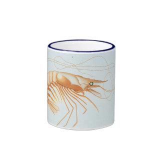 Vintage Shrimp Anatomy, Marine Life Ocean Animals Ringer Mug