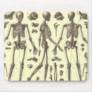 Vintage Skeleton Diagrams Mouse Mat