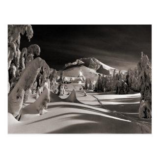 Vintage ski  image, Ski trail through the trees Postcard