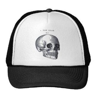 Vintage Skull Anatomy Hat