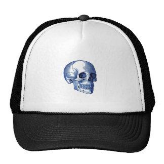 Vintage Skull Anatomy Hats