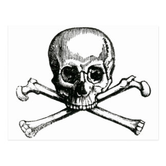 Vintage Skull and Crossbones Postcard