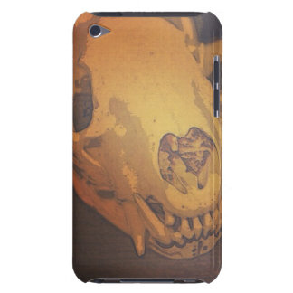 Vintage Skull Barely There iPod Cases