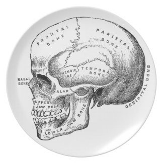Vintage Skull Party Plate