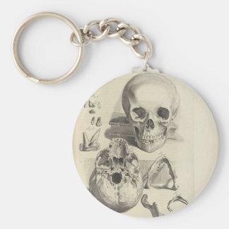 Vintage Skulls Basic Round Button Key Ring