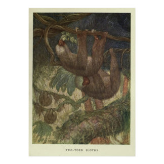 Vintage Sloth Painting (1919) Poster