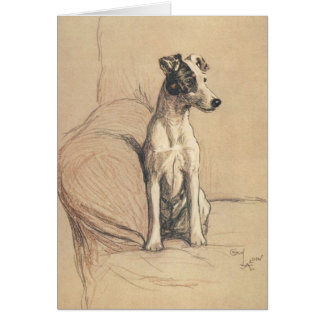 Vintage - Smooth Fox Terrier, Card
