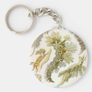 Vintage Snails and Sea Slugs by Ernst Haeckel Key Ring