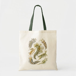 Vintage Snails and Sea Slugs by Ernst Haeckel Tote Bag
