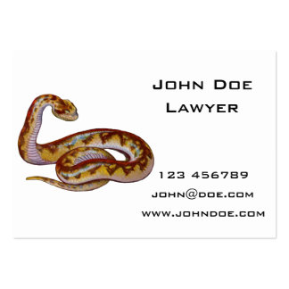 Vintage Snake Illustration Pack Of Chubby Business Cards