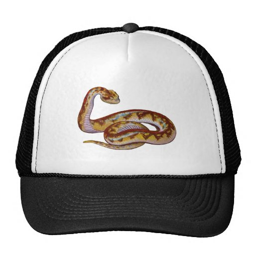 Vintage Snake Illustration Trucker Hats