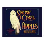 Vintage Snow Owl Apples Label Postcard