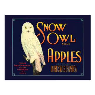 Vintage Snow Owl Apples Label Postcard