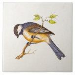 Vintage Song Bird Illustration -1800's Birds