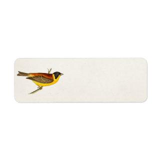 Vintage Song Bird Illustration -1800's Birds Return Address Label